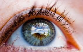 visionary eye